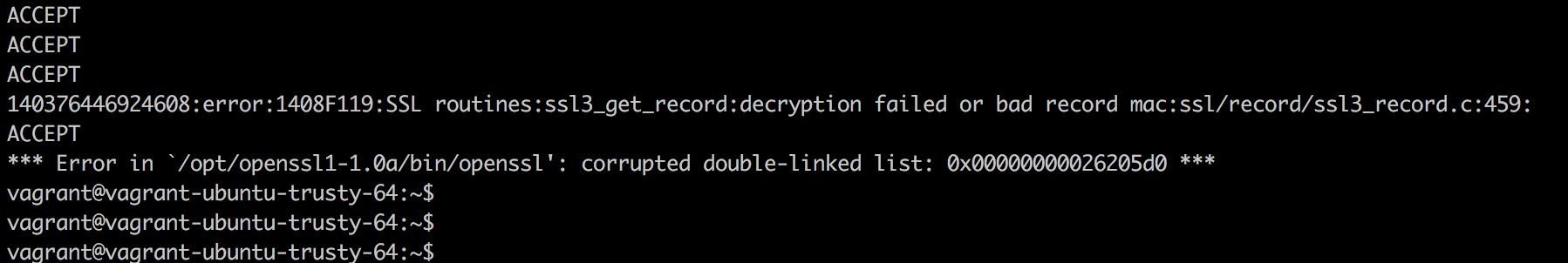 OpenSSL-Crash